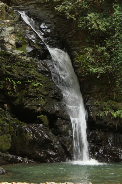 004鮎返しの滝.png